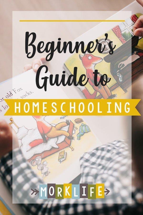 Beginner's Guide to Homeschooling