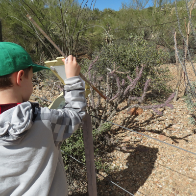 Family Friendly Outdoor Activities Tucson