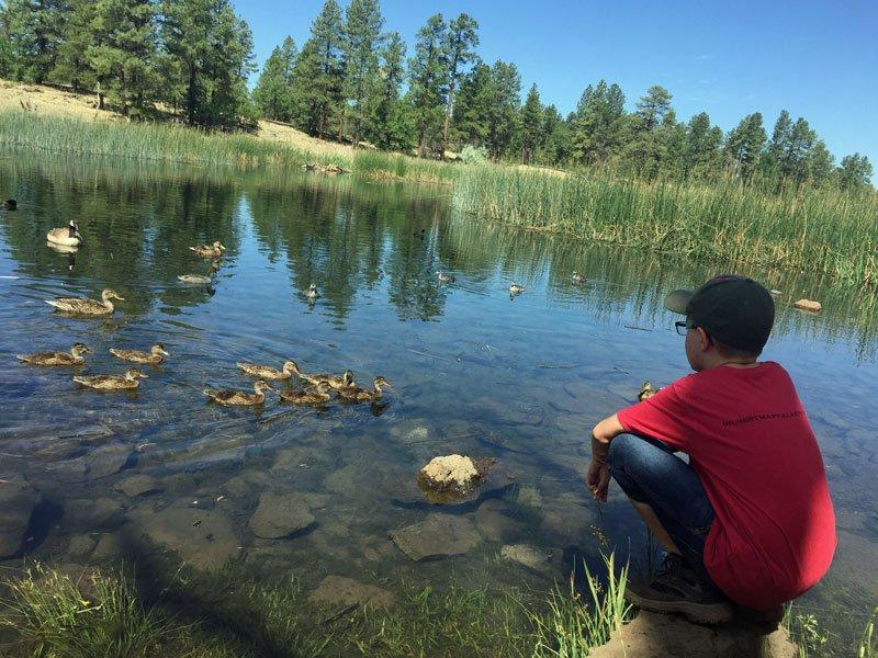 White Mountain Nature Center in Pinetop AZ